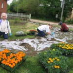 Everyone is welcome to help plant and weed our community flower gardens!