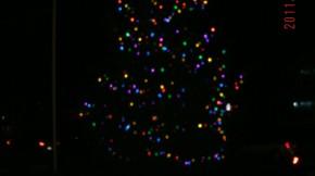 Brighton Heights Light The Night 2014 Neighborhood Holiday Festival